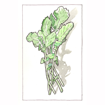 a painting of a bunch of arugula